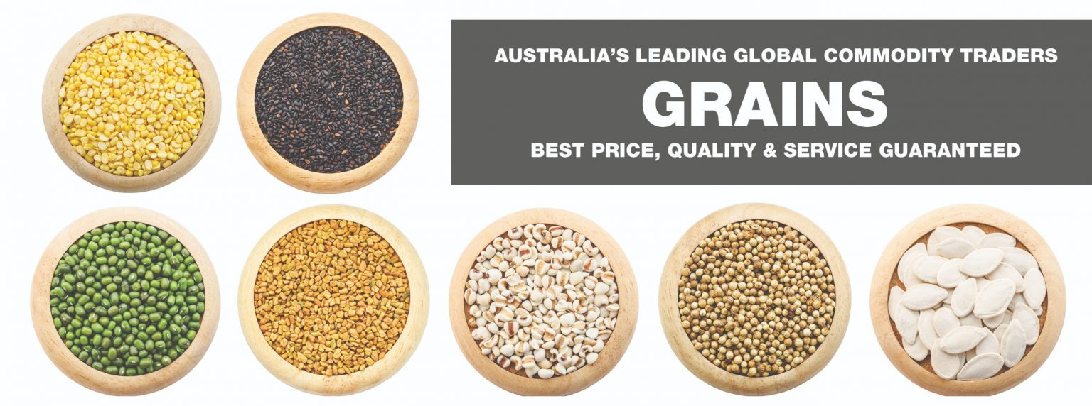 Grains 2