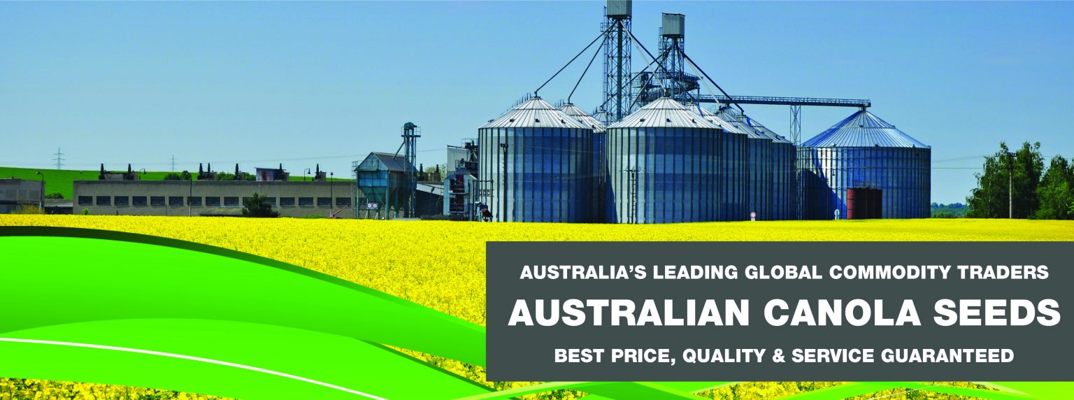 VVRS Website Banner_Canola 1